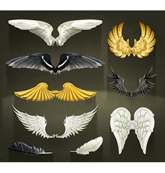 Wings set on black background vector