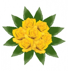 bunch of yellow roses vector image vector image
