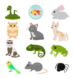 home pets set isolated on vector image vector image