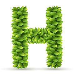 Letter h alphabet of green leaves vector