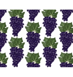 Red grapes clusters pattern vector image vector image