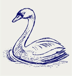 Swan sketch vector image
