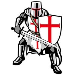 templar knight vector image