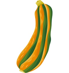 Zucchini vegetable cartoon vector