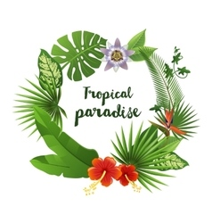 Wreath made of tropical leaves and flowers vector