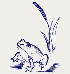 Frog sketch vector image vector image
