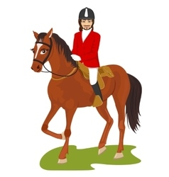 Young handsome man ridding a horse vector