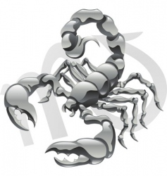 Scorpio star sign vector