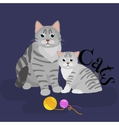 Pets mother cat and kitten sitting white vector