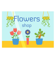 Flat design flowers shop facade icon store modern vector