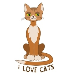 Ginger cat sitting alone on white background vector