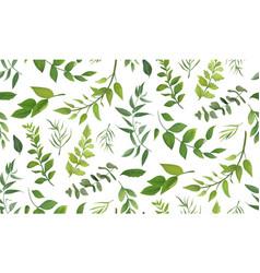 Seamless pattern of eucalyptus leaves greenery vector