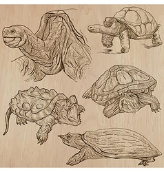 Turtles - an hand drawn pack vector