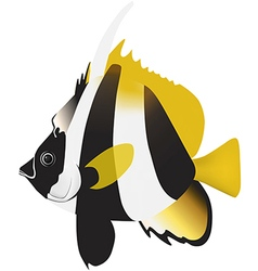 Masked bannerfish vector