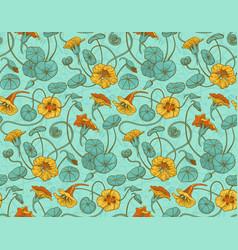 Nasturtium pattern on turquoise vector