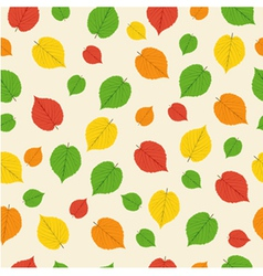 pattern from autumn leaves vector image