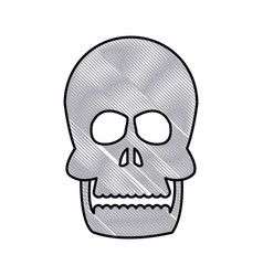 Drawing human skull bone care healthy vector