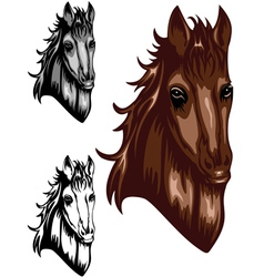 horse color set vector image vector image