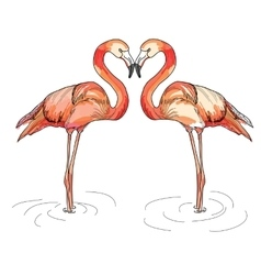 Love pink flamingos vector