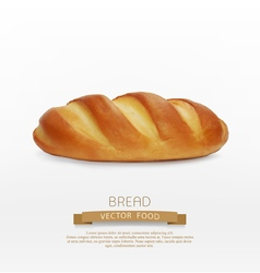 Bread loaf isolated on white background vector