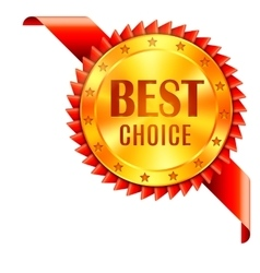 Best choice award vector