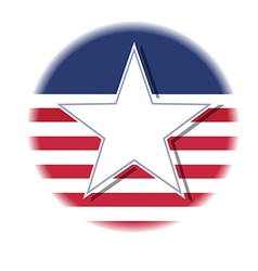 american star flag vector image