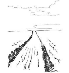 landscape nature with agrarian vector image