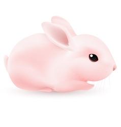 Pink rabbit vector