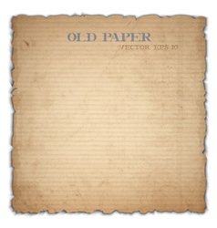 Sheet of old cardboard vector image vector image