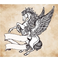 Vintage pegasus with scroll for your text vector