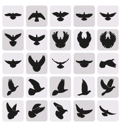 Flying black dove pigeon simple icons set vector
