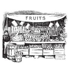 Fruit market vintage vector