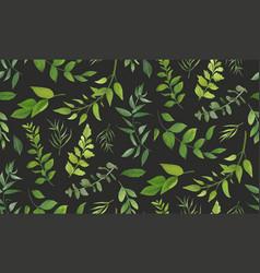 Seamless pattern of eucalyptus palm leaf fern vector