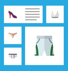 Flat icon garment set of lingerie brasserie vector