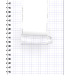 Ripped notebook vector