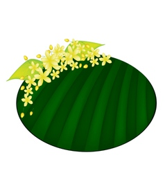 Cassia Fistula Flower on Green Banana Leaf vector image