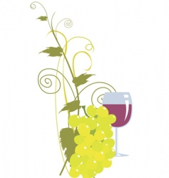 Grape and wine vector
