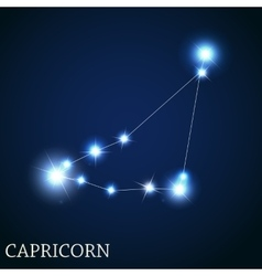 Capricorn zodiac sign of the beautiful bright vector