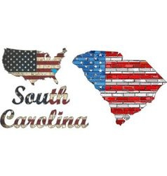 USA state of South Carolina on a brick wall vector image