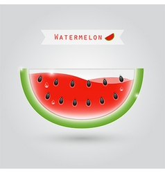 watermelon fruit juice vector image