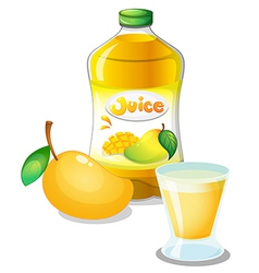 Mango juice drink vector