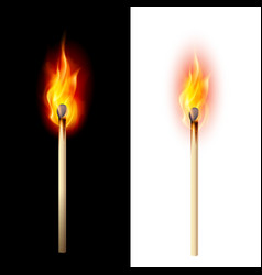 realistic burning match on white and black vector image vector image