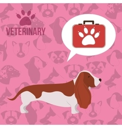 vet clinic design vector image vector image