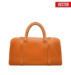 Classic leather bag vector