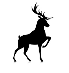 Silhouette of the buck vector