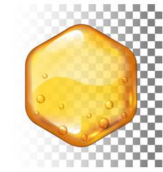 realistic honey drop hexagon on vector image