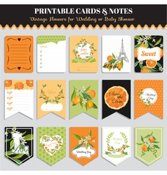 Vintage Orange Flowers Card Set Birthday vector image vector image