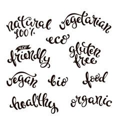 conceptual handwritten phrases vector image