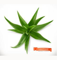 aloe vera medicinal plant 3d icon vector image vector image