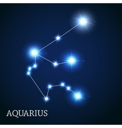 Aquarius zodiac sign of the beautiful bright stars vector